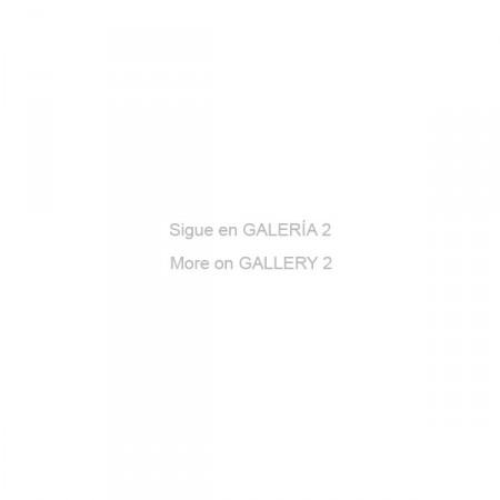 Sigue galeria2-