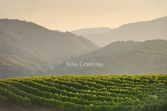 ramon_vaquero_viña_costeira_2_publicidad